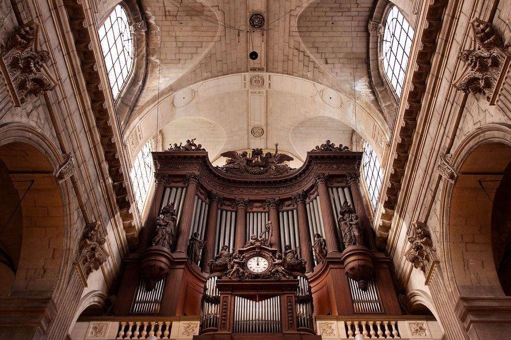 O órgão é uma das poucas palavras da língua portuguesa que levam til e acento