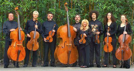 Sério: olhem o T A M A N H O do violino contrabaixo!!!