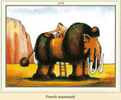 french mammoth