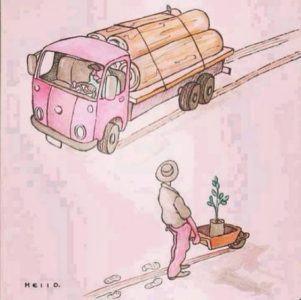 plantando arvores
