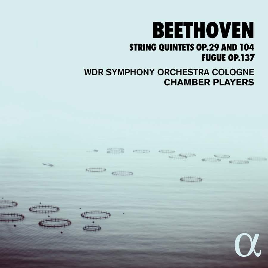 Beethoven (1770-1827): Quintetos de Cordas, Op. 29 e Op. 104 – WDR Symphony Orchestra Cologne Chamber Players ∞ #BTHVN 250 ֍