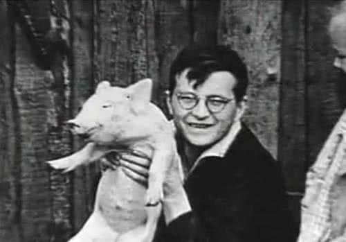 Dmitri Shostakovich (1906-1975): Integral das Sinfonias e mais — CD 5 de 12 (Sinf 5, 5 Fragmentos, Ashkenazy)