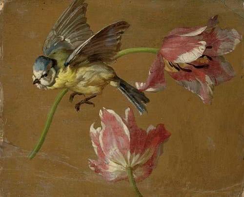 Rameau / Couperin / D'Agincour / Dandrieu / Daquin / Dornel / Duphly / Février: 'Le Rappel des Oiseaux' e outras peças (Luc Beauséjour)